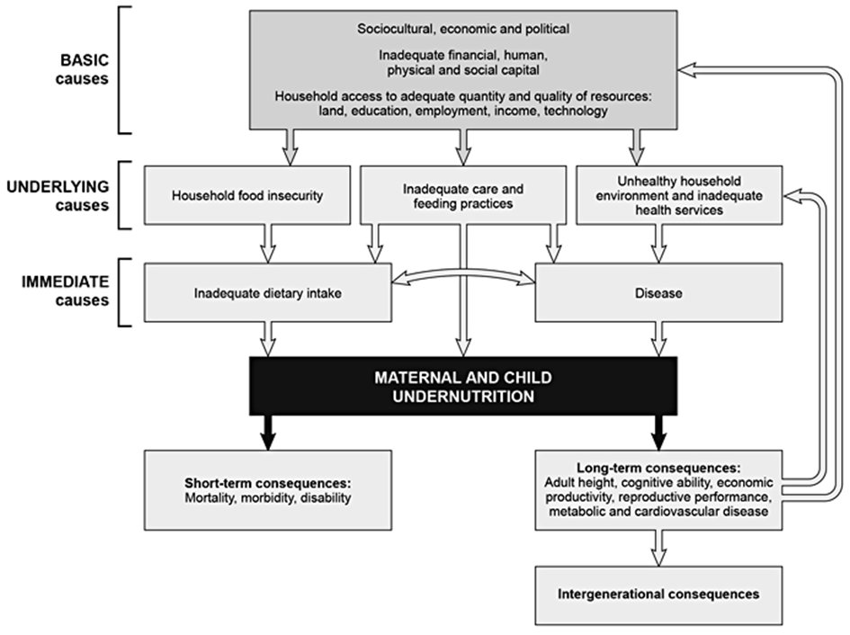 Epidemiology of Global Micronutrient Deficiencies